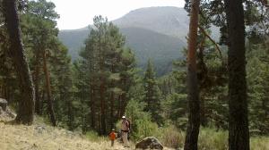 View towards Cabezas de Hierro from below Cotos